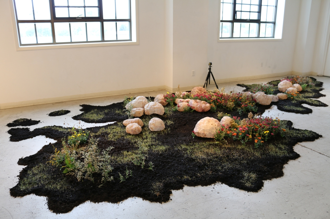 yeonhee-cheong_growth-and-decay-1