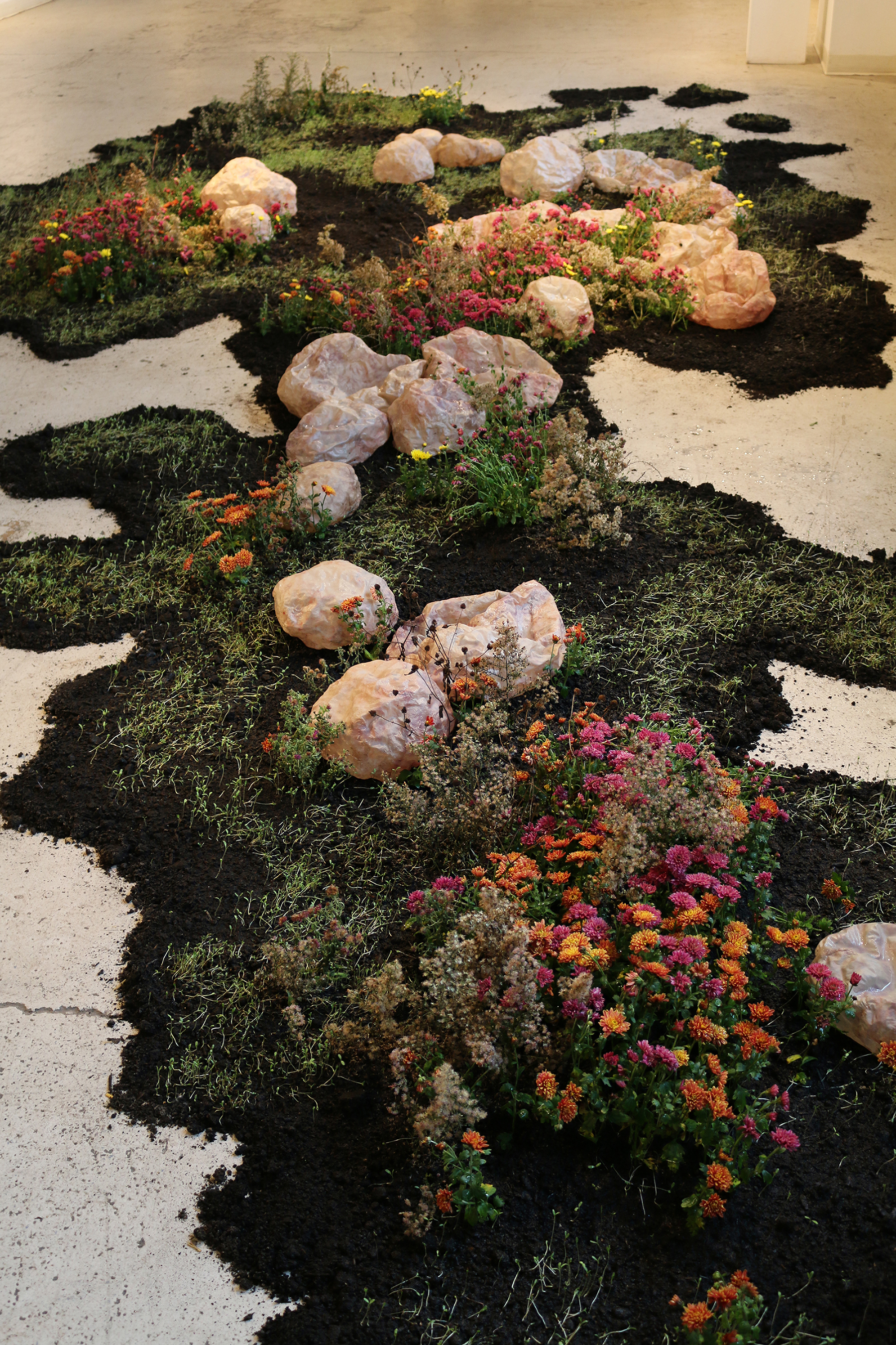 yeonhee-cheong_growth-and-decay-2